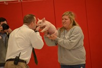 Tiny Piglet Creates Squeals of Delight among Students at Huber Ridge Reward Assembly