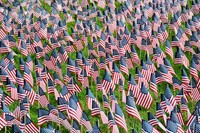 Westerville South Students Plant 3,000 Flags to Commemorate Patriot Day
