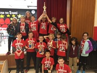 Team Cherrington Wins Westerville Elementary Chess Tournament